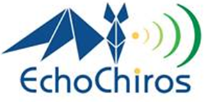 Logo EchoChiros, bureau d'études chiroptères