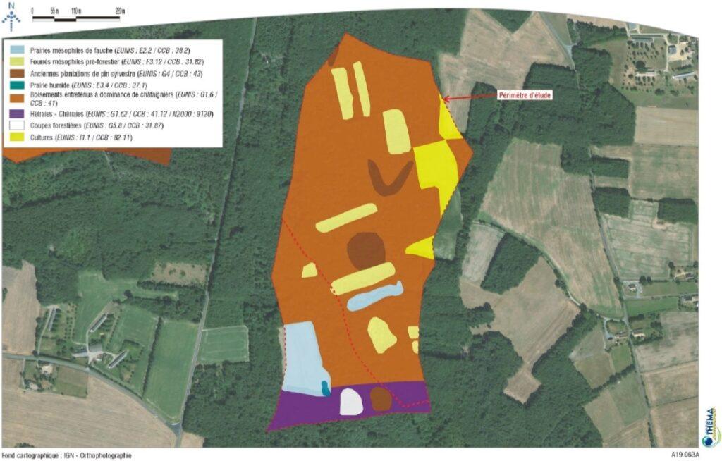 THEMA - Carte des habitats - zone Grandes Landes